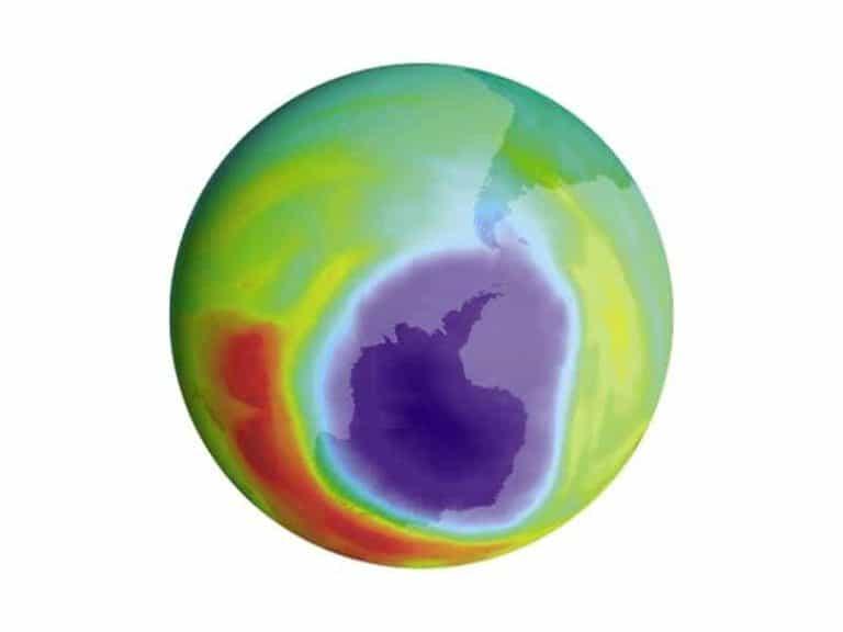Ozone Layer Infographic
